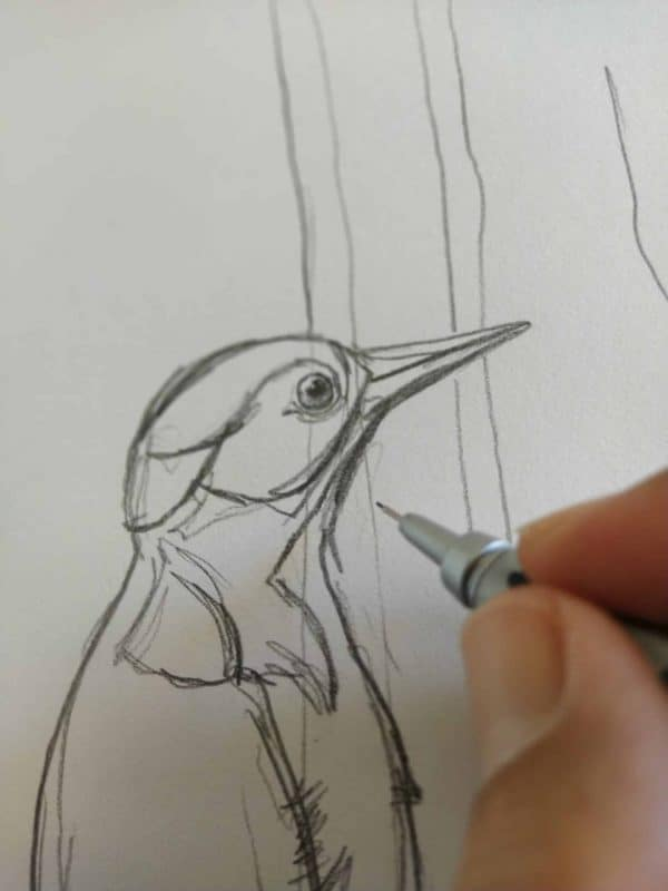 Spotted Woodpecker Print